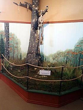 explore oak island display